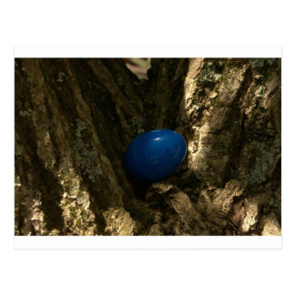 easter egg in a tree for easter egg hunt postcard