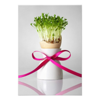 Easter Egg Shell With Greens And Pink Ribbon 2 Announcement