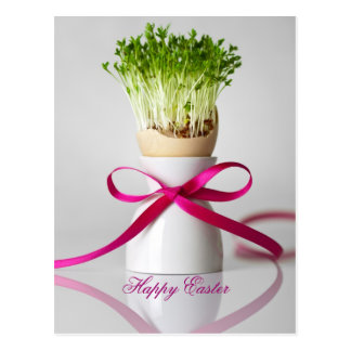 Easter Egg Shell With Greens And Pink Ribbon Postcard