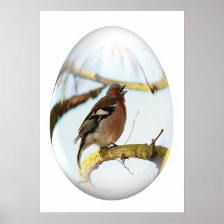 easter egg singing goldfinch poster