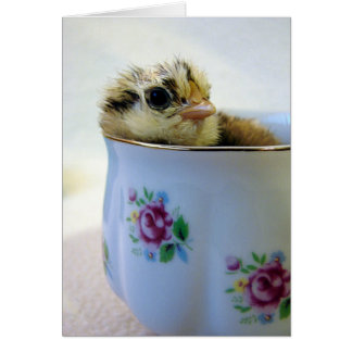 Easter Egger Chick in Cup Card