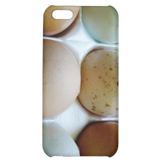 Easter Eggers Assorted Eggs in Carton Case For iPhone 5C