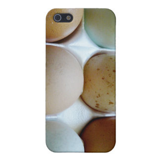 Easter Eggers Assorted Eggs in Carton Case For iPhone 5