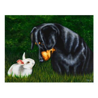 Easter Eye to Eye - Dachshund Dog and Bunny Rabbit Postcard