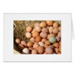 easter Farm eggs Greeting Card