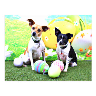 Easter - Fox Terriers - Sadie and Baboo Post Cards