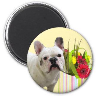 Easter French Bulldog magnet