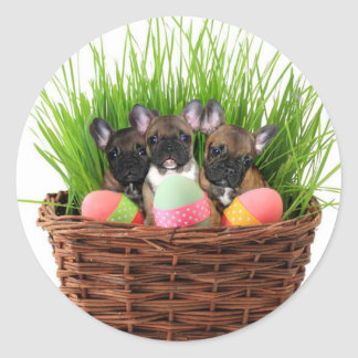 Easter french bulldog puppies classic round sticker
