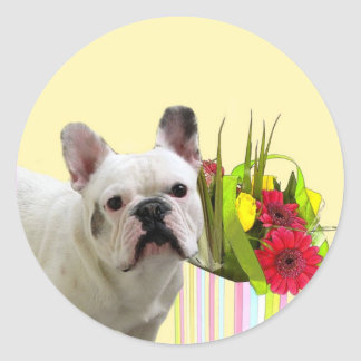 Easter French Bulldog stickers