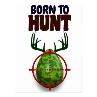 easter funny design, Born to hunt deer egg shooter Postcard
