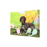 Easter - German Shorthair Pointer - Kaiser Stretched Canvas Print