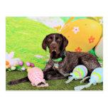 Easter - German Shorthair Pointer - Kaiser Post Card