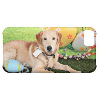 Easter - Golden Retriever - Augie iPhone 5C Cases
