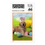 Easter - Golden Retriever - Frank Stamps