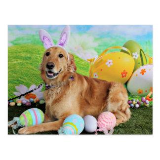 Easter - Golden Retriever - Molly Postcard
