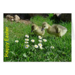 Easter Goslings and Daisies Card