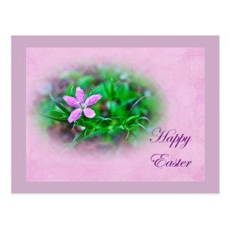 Easter Greetings Deptford Pink Wildflower Postcard