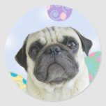 Easter Greetings pug Stickers
