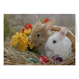 "Easter - ""Happy Easter"" Baby Bunnies Card"