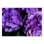 Easter Hydrangea (photography) Card template Greeting Cards