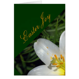 """Easter Joy /Luminous White Lily "" Card"