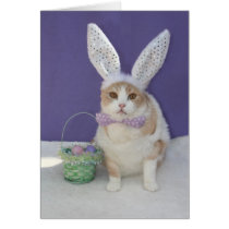 Easter Kitty Card
