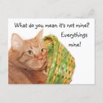 Easter kitty holiday postcard