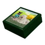 Easter - Komondor - Zoey - Basenji X - Jasper Gift Box