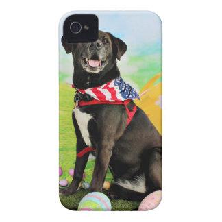 Easter - Labrador - Dakota iPhone 4 Case