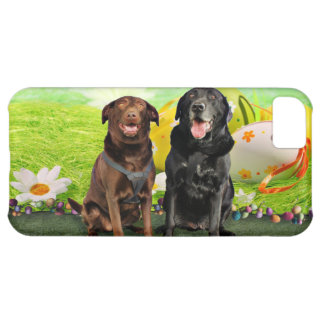Easter - Labrador - Jack and Diane iPhone 5C Covers