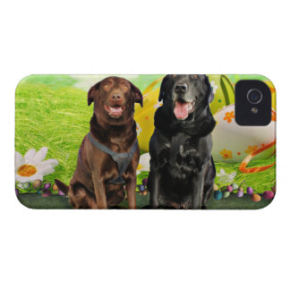 Easter - Labrador - Jack and Diane Case-Mate iPhone 4 Cases
