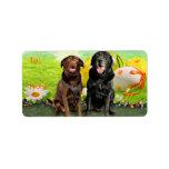 Easter - Labrador - Jack and Diane Custom Address Labels