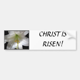 Easter Lily Bumper Sticker