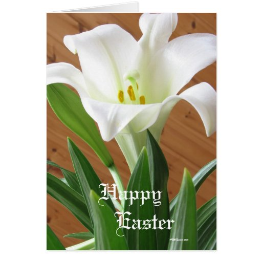 Easter Lily Card