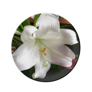 Easter Lily Flower Porcelain Plate