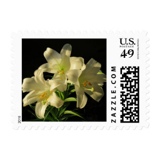 Easter Lily Flowers Postage