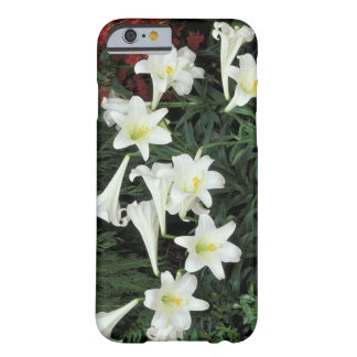 Easter Lily (Lilium regale) Barely There iPhone 6 Case