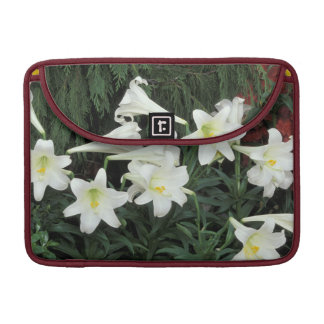 Easter Lily (Lilium regale) MacBook Pro Sleeve