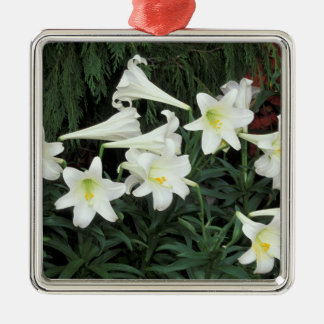Easter Lily (Lilium regale) Metal Ornament