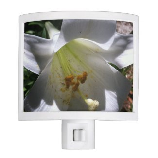 Easter Lily Shadow Night Lites