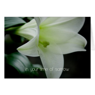 Easter Lily • Sympathy Card