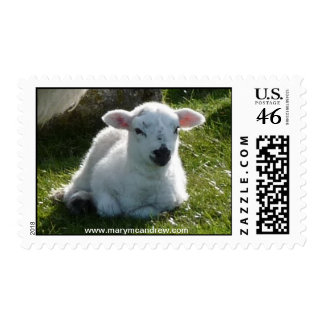 Easter Little Lamb Stamps