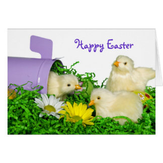 Easter Mail Card
