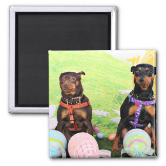 Easter - Min Pin - Zena and Gidget 2 Inch Square Magnet