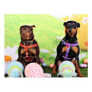 Easter - Min Pin - Zena and Gidget Postcard