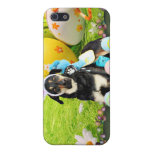 Easter - Mixed Breed - Jake Case For iPhone 5