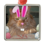 Easter Orange Tabby Kitty Cat Christmas Ornaments