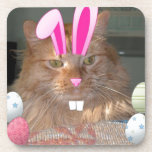 Easter Orange Tabby Kitty Cat Coaster