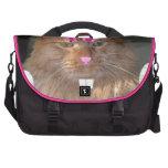 Easter Orange Tabby Kitty Cat Commuter Bag
