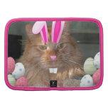 Easter Orange Tabby Kitty Cat Folio Planner